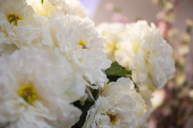 Flores y plantas artificiales 2