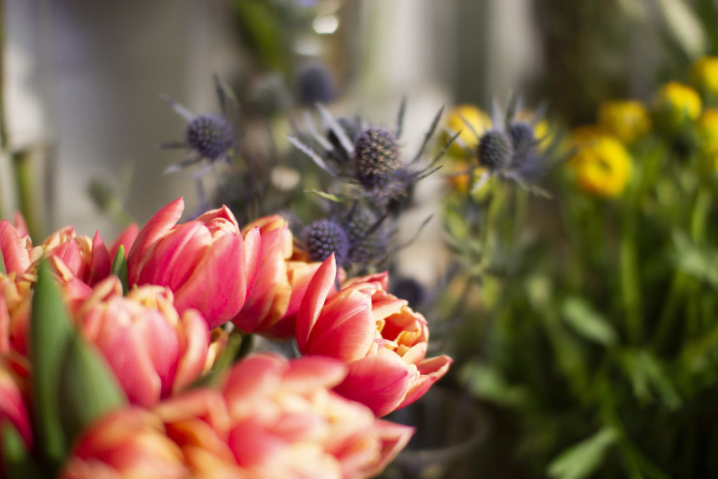 flores naturales 2