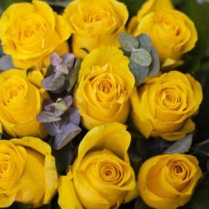 rs Caja rosas amarillas 2