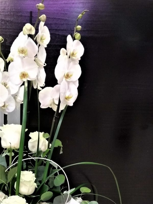 flores ourense