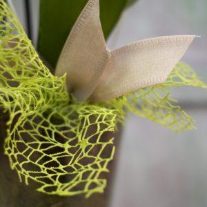 rs Orquídea en cristal 2